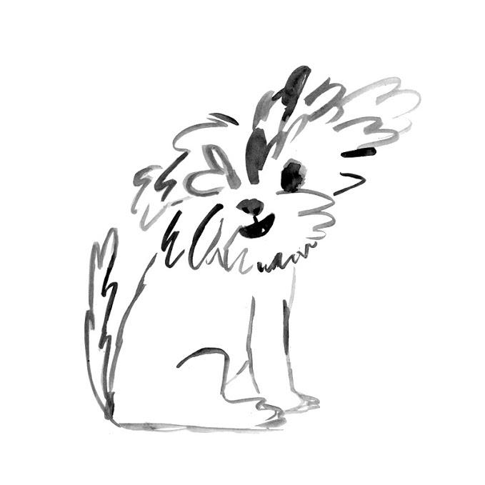 dog, doggy, illustration, ink, ilustración, tinta, perro, perrito, elylu, Eliane Mancera