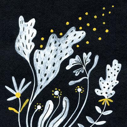 floral illustration, gouache on paper, licensing